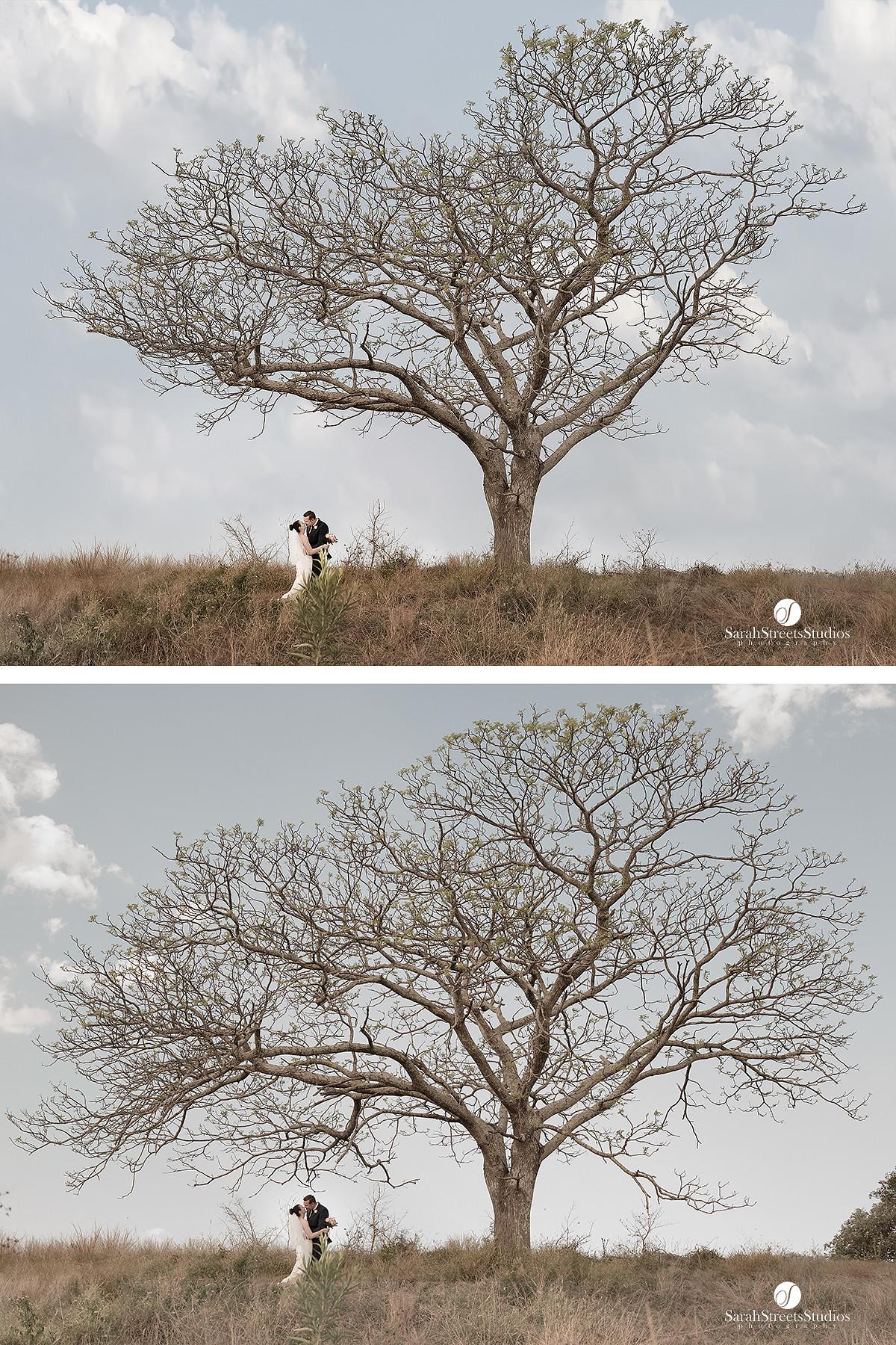 award winning photography brisbane, appas, sarah streets studios